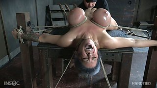 Hard tied busty babe Alyssa Lynn gets her pussy punished with vibrator